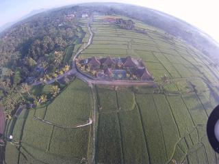 tegalalang villa vano rice field view - Tegalalang vacation rentals