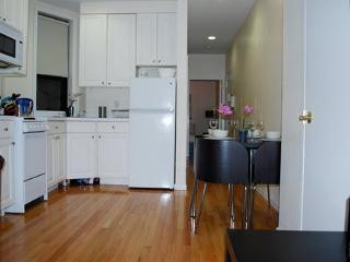 Cute Flat in Midtown East 3FE ~ RA42876 - Long Island City vacation rentals