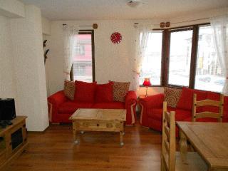 2 bedroom apartment Bansko, Blagoevgrad, Bulgaria. - Blagoevgrad vacation rentals