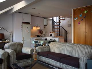 Attic-Duplex in the heart of Madrid.Full- equipped , located close to Museums. - Madrid Area vacation rentals