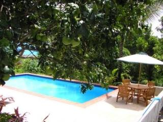 PalmView Villa, Riviere Doree, Choiseul, St. Lucia - Choiseul vacation rentals
