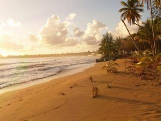 When we say Beachfront we mean on the beach! - Luquillo vacation rentals