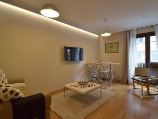 Staylish Cosy flat in Central Location Cihangir, Fully Furnished - Istanbul & Marmara vacation rentals