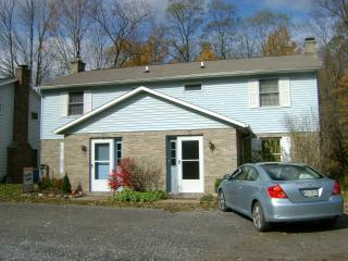 Ellicottville N.Y. Rental for the Ski Season - Ellicottville vacation rentals