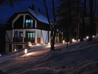 Andric Apartments on mountain Tara - Zlatibor vacation rentals