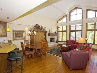 Colonnade Residence #14- Deluxe Apartment in the Heart of Ketchum with air conditioning in great room; - Ketchum vacation rentals