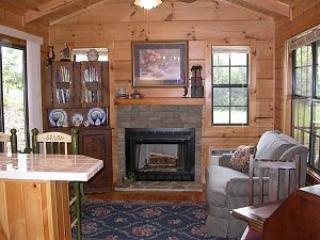 Luxury log cabin near beautiful Lake James, NC - Nebo vacation rentals