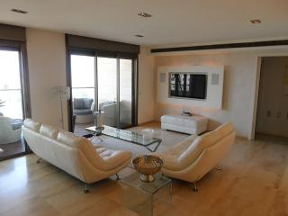 Amazing apt in Ramat Aviv HaHadasha, Fully Furnished, Balcony Sea View - Tel Aviv vacation rentals