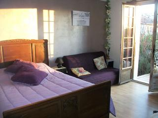 bed and breakfast in the countryside - Chirens vacation rentals