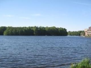 Furnished Reston Studio by the Lake- Close to DC - Reston vacation rentals