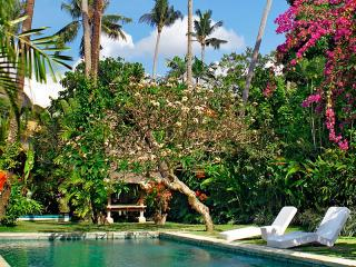 Fantasyland holiday villa near the beach. - Sanur vacation rentals