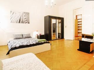 5BEDROOMs 12BEDs HISTORICAL OLD-TOWN BASILICA - Budapest vacation rentals