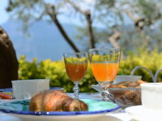 Villa Erato - Praiano vacation rentals