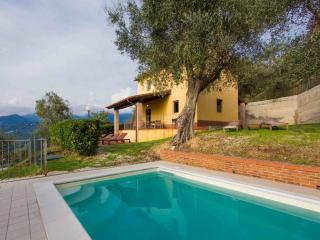 Villa with swimming-pool | Rosetta - Camaiore vacation rentals
