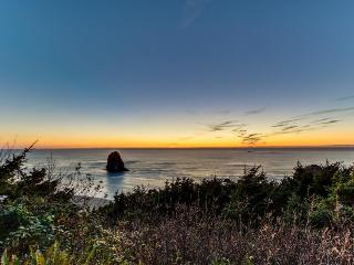Private hot tub & sauna, pet-friendly oceanfront home - Arch Cape vacation rentals