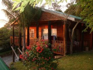 Nié-Zel LogHome - White River vacation rentals