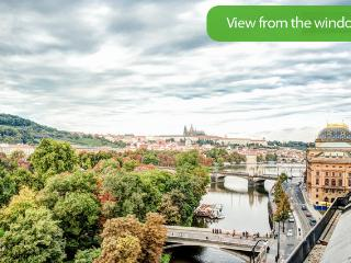 Castle And Charles Bridge View Apartment - Prague vacation rentals