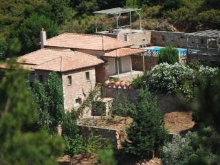 Hibicus Villa - Agios Petros vacation rentals