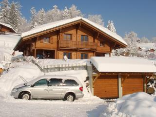 Chalet in Swiss ski resort - Gryon vacation rentals