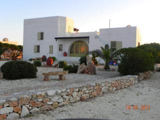 Villa Eden a luxury villa in Paros Island Greece - Drios vacation rentals