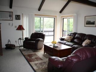 Beautiful Camelback Townhouse ski on/off - Tannersville vacation rentals