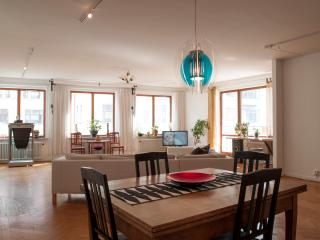 Malmö city centre. 140 sqm. Free WiFi! - Sweden vacation rentals