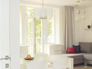 Center Apartment run by international family - Belarus vacation rentals