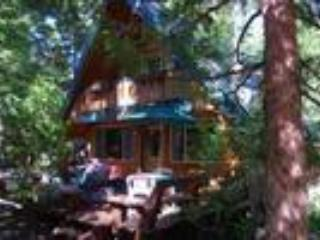 Homewood cabin...ski home for lunch. - North Tahoe vacation rentals