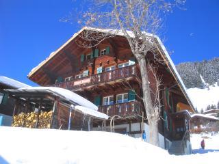 heimelige Ferienwohnung - Jungfrau Region vacation rentals
