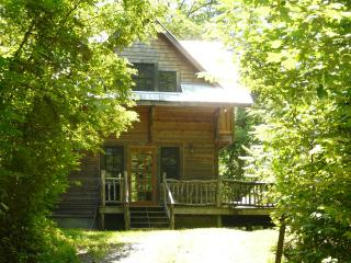 Comfortable Cabin with Private Hiking Trails - Marshall vacation rentals