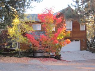Lake Arrowhead Luxury Home - 4 bedrooms/ 3 baths - Lake Arrowhead vacation rentals