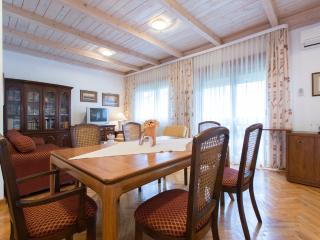LUXURY APARTMENT BorisLux Zagreb(1-6 pers.,100m2) - Zagreb vacation rentals