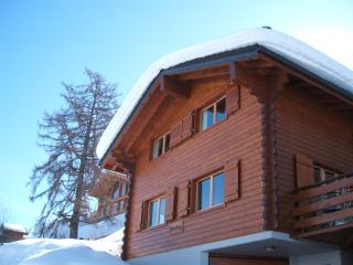 Stunning Winter and Summer Swiss mountain chalet - Nendaz vacation rentals