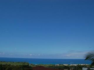 Whalewatch Home - Kailua-Kona vacation rentals