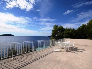 Apartments Ivan - 53531-A1 - Island Korcula vacation rentals