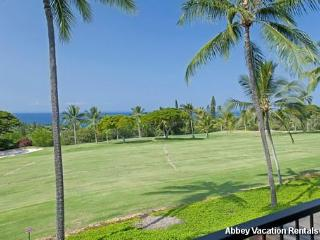 K4-CCV 208 - Kailua-Kona vacation rentals