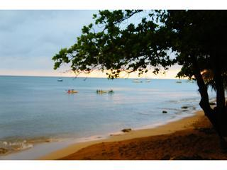 kayaking at your condo beach - Caribbean Sea View Condo - across the beach - Rincon - rentals