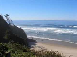 7Cs Oceanfront Cabin near Cannon Beach & Arch Cape - Arch Cape vacation rentals