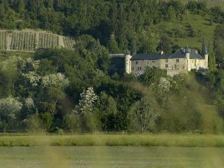 Chateau 10BD Groups Welcome French Alps Summer - Saint Francois Longchamp vacation rentals