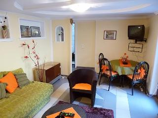Apartment Knez - Serbia vacation rentals