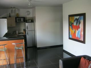 Executive studio 2 Park Lleras sound Proof AC - Medellin vacation rentals