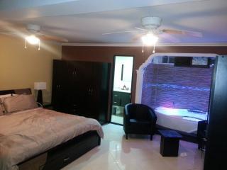 Gorgeous Brand New 2 bedroom hot tub Park Lleras - Medellin vacation rentals