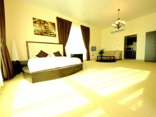 Fully Furnished Studio in Abu Dhabi - Abu Dhabi vacation rentals