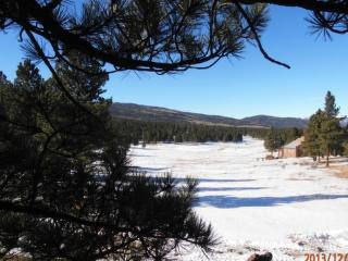 Lakeview Cabin - Taos Area vacation rentals
