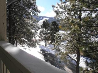 Mountain Haven #15 - Angel Fire vacation rentals