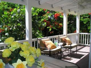 The Caribe Suite - Frederiksted vacation rentals