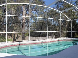 Great home in quiet area, private heated pool , TV in each bedroom, Wi-Fi - Davenport vacation rentals