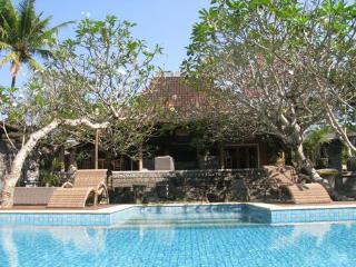 VILLA JODHPUR-UMAH D'KALI  YOGYAKARTA - Yogyakarta vacation rentals