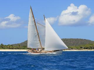 Sail, Snorkel, Hike Ecotour on Classic Yacht Heron - Clifton vacation rentals