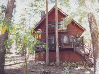 Keen - Comfortable cabin near Tahoe City, hot tub - Tahoe City vacation rentals